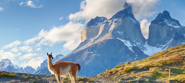 Tercera edición del Patagonia Eco Film Fest