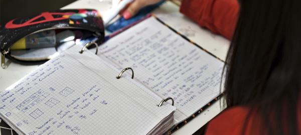 La escuela como garantía de los derechos del niño