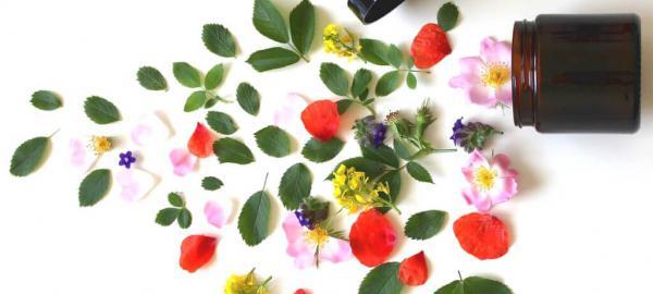 belleza sustentable maquillaje pintereste cruelty free lavanda